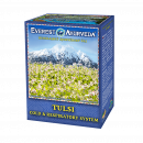 Tulsi, Ayurvedic herbal mixture for colds, respiratory infections, against viruses, bacteria with Indian basil and 7 herbs